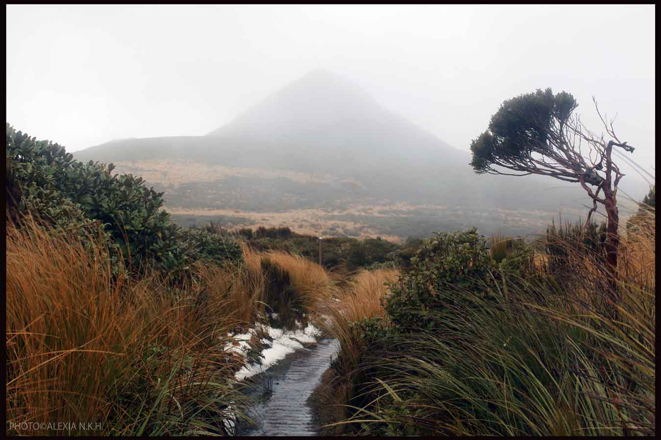 Winter July on Taranaki mounatin